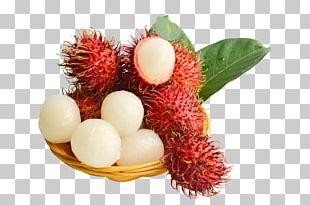 Rambutan Fruit Lychee Red PNG