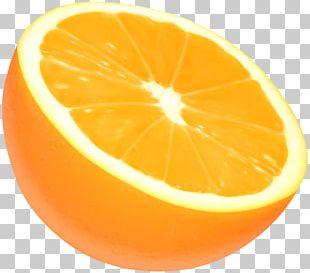 Tangelo Orange PNG