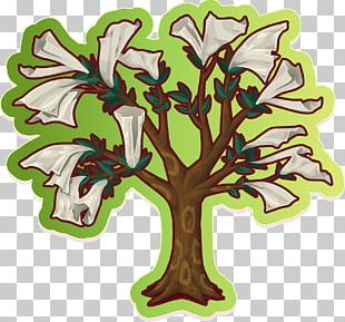 Branch Tree Autumn Leaf Color PNG