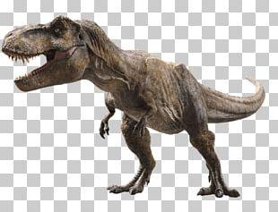 Universal S Tyrannosaurus Jurassic Park Film Post-credits Scene PNG
