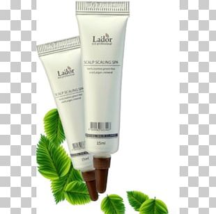 Scalp Hair Care Skin Cosmetics PNG