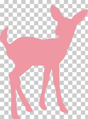 Deer Silhouette Moose PNG
