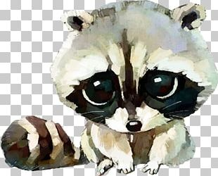 Raccoon Dog Squirrel Cuteness Drawing PNG