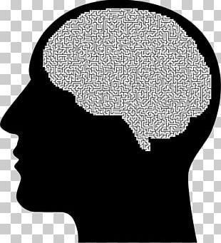 The Female Brain Human Head Human Brain PNG