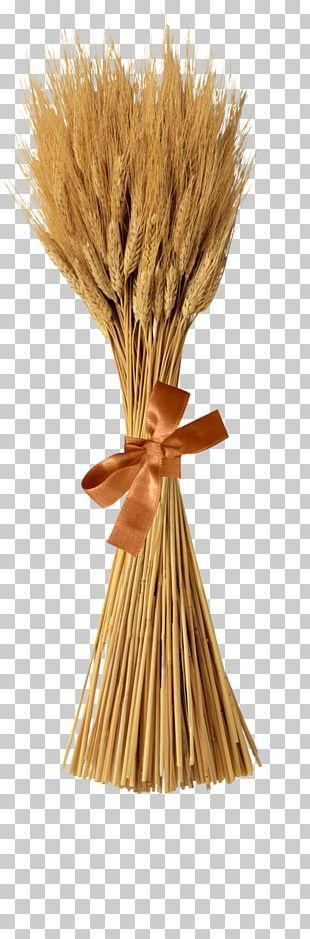 Emmer Sheaf Cereal Straw Bale PNG