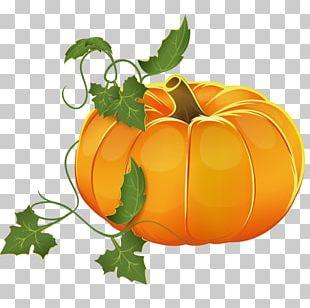 Pumpkin Pie The Pumpkin Patch Parable Squash Soup Autumn PNG