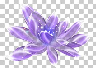 Violet Light Purple PNG
