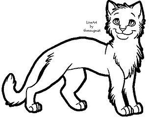 Cat Kitten Line Art PNG