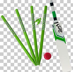 Cricket Bats England Cricket Team Australia National Cricket Team India National Cricket Team Marylebone Cricket Club PNG