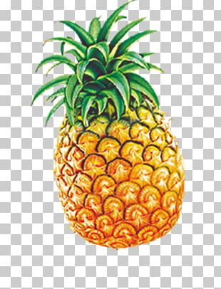 Ice Cream Juice Nectar Pineapple Fruit PNG