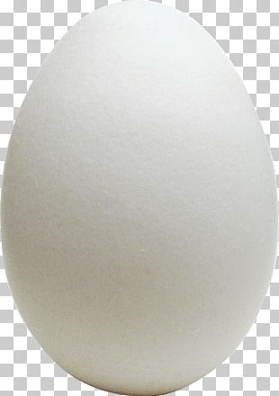 Chicken Egg Chicken Egg Omelette World Egg Day PNG