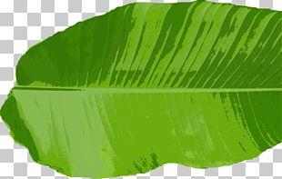 Banana Leaf Loi Krathong Thai Cuisine PNG