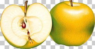 Fruit Apple PNG