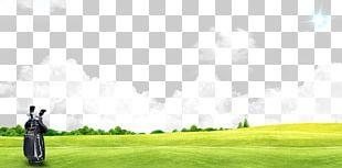 Golf Club Golf Course Sport Golf Ball PNG