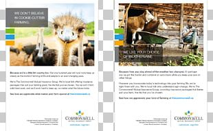 Mammal Advertising Fauna Brand PNG