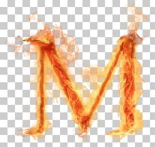 Letter Alphabet M PNG