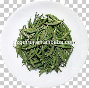 Hōjicha Green Tea Longjing Tea Tea Plant PNG