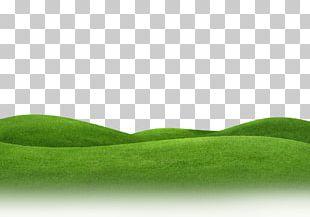 Lawn Meadow Grassland Landscape PNG