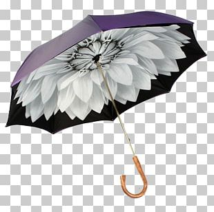 Umbrella Auringonvarjo Raincoat Fashion Accessory PNG