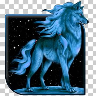 Wolf S Android Application Package Desktop Mobile App PNG