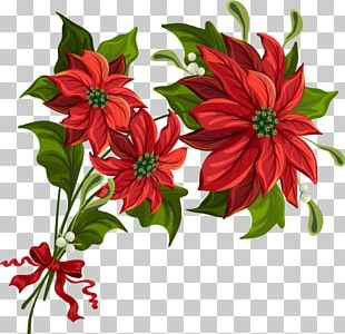 Poinsettia Art Christmas PNG