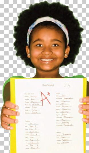 Stock Photography Grading In Education School Student PNG