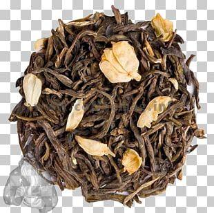 Green Tea Oolong White Tea Coffee PNG