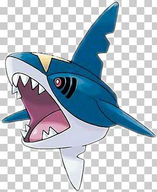 Pokémon Omega Ruby And Alpha Sapphire Pokémon Sun And Moon Pokémon Ruby And Sapphire Pokémon GO Pokémon FireRed And LeafGreen PNG