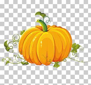 Pumpkin Autumn Harvest PNG