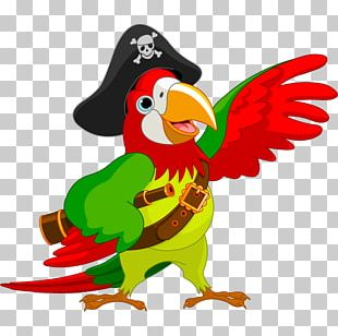 Pirate Parrot Piracy Jack Sparrow PNG