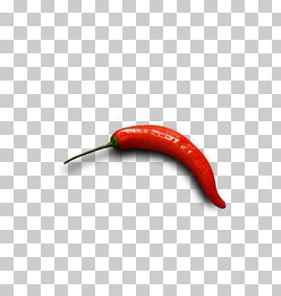 Bird's Eye Chili Cayenne Pepper Serrano Pepper Bell Pepper Chili Pepper PNG