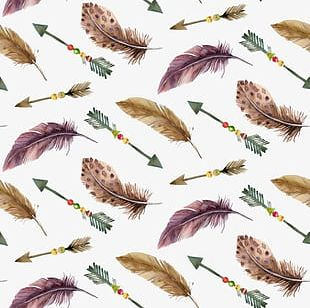 Feather Shading PNG