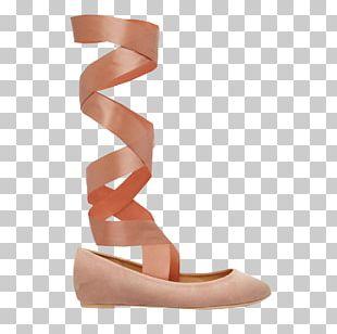 Ballet Shoe Pointe Shoe Ballet Flat PNG