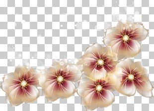 Ice Cream Peaches And Cream Flower PNG