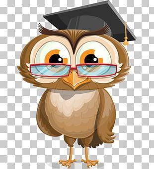 Owl Graduation Ceremony Bird Cartoon PNG