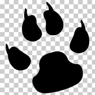 Dog Paw Pet Cat PNG