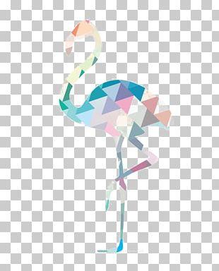 Bird Greater Flamingo Geometry PNG
