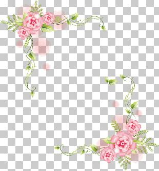 Flower Frames Photography PNG