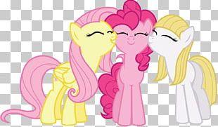 Pinkie Pie Fluttershy Rainbow Dash Twilight Sparkle Rarity PNG