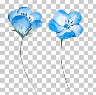 Watercolor Painting Blue Flower PNG