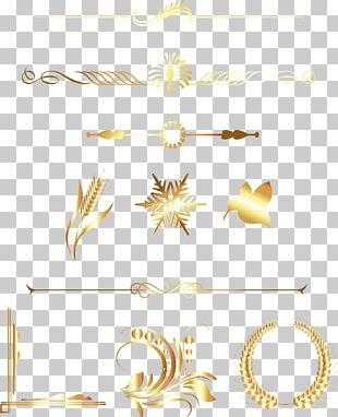 Golden Division Line PNG