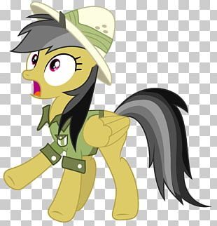 Pony Daring Don't Rainbow Dash PNG