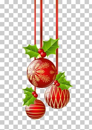 Christmas Ornament Common Holly PNG