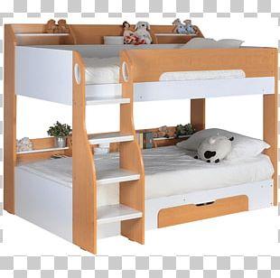 Bunk Bed Bed Frame Trundle Bed Bedroom PNG
