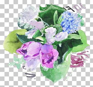 Watercolor Painting Photography Art PNG