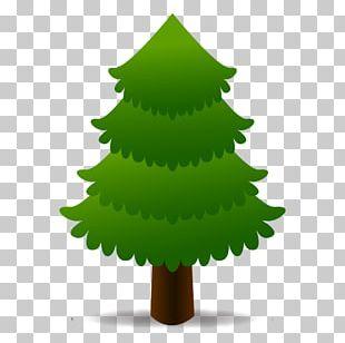Evergreen Tree Window Tsentr Diagnostiki I Lecheniya Akademicheskiy Emoji PNG