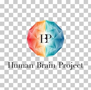 Human Brain Project Research Future And Emerging Technologies PNG