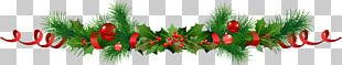 Common Holly Christmas Ornament Christmas Decoration Santa Claus PNG