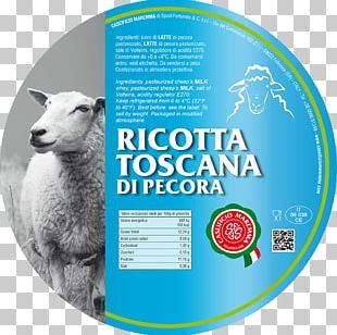 Sheep Caseificio Maremma Di Spadi Fortunato & C S.r.l. Milk Ricotta Cheese PNG