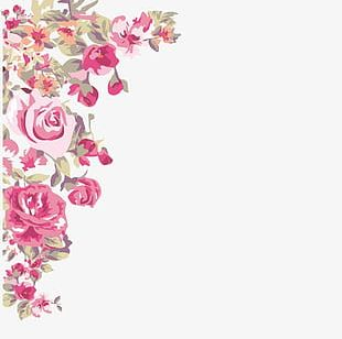 -painted Flowers Corner PNG